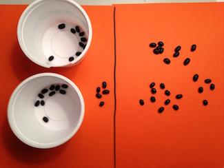bean algebra with negative numbers